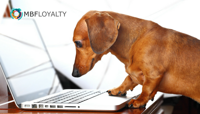 How To Create Insanely Loyal Clients Patients 1